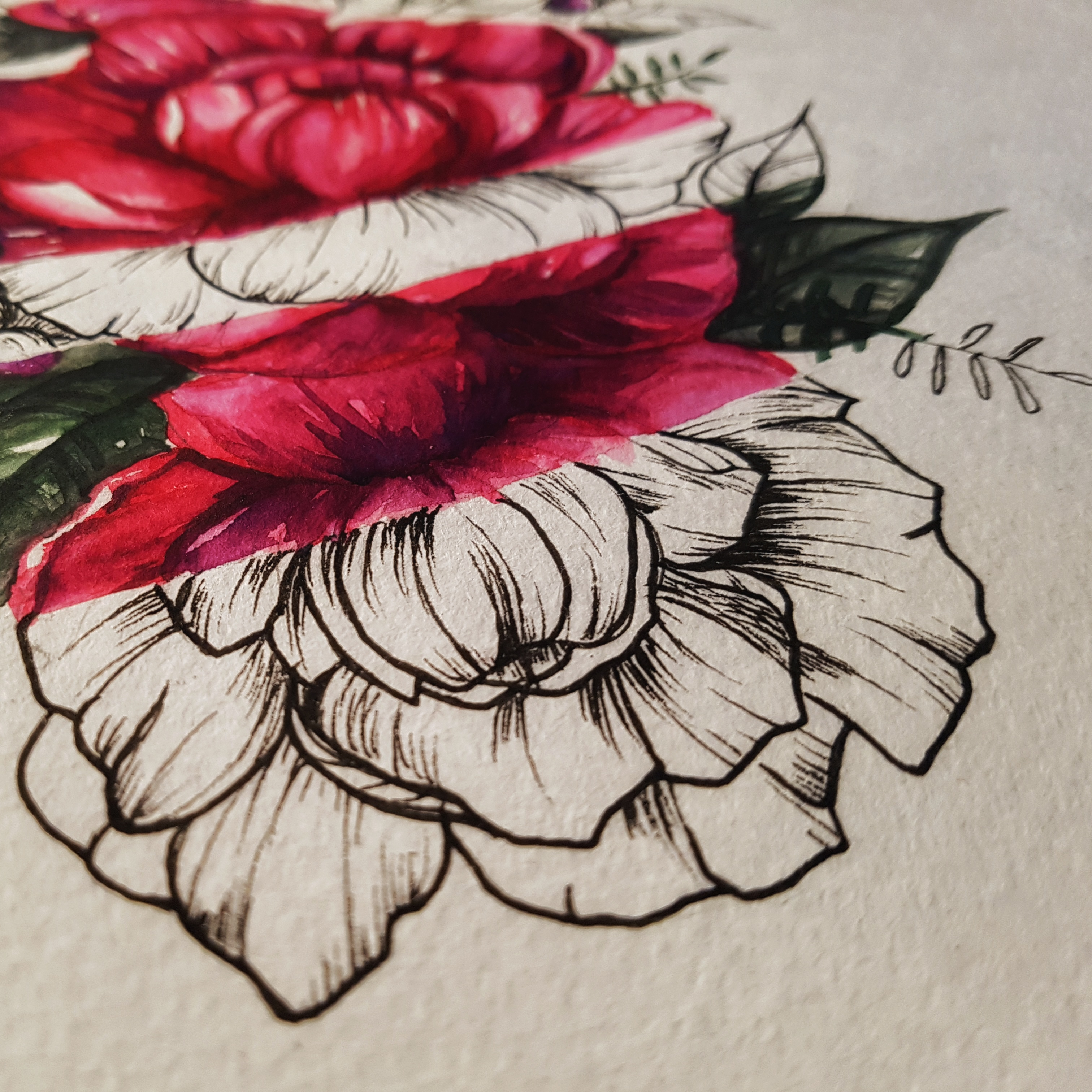 peony-tattoo-half-colored-2